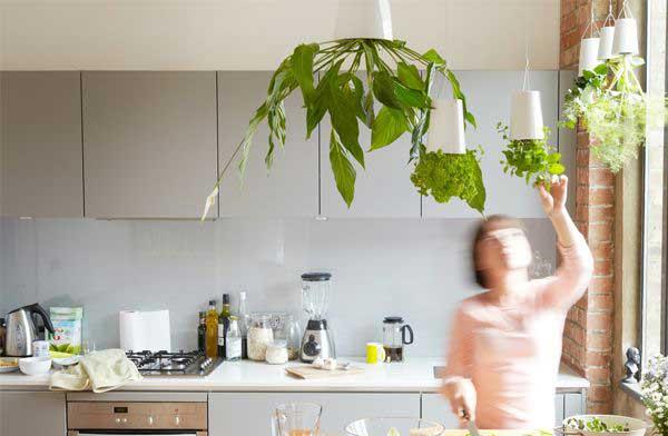 逆さまにして吊るして植物を育てられる、おしゃれなプランター