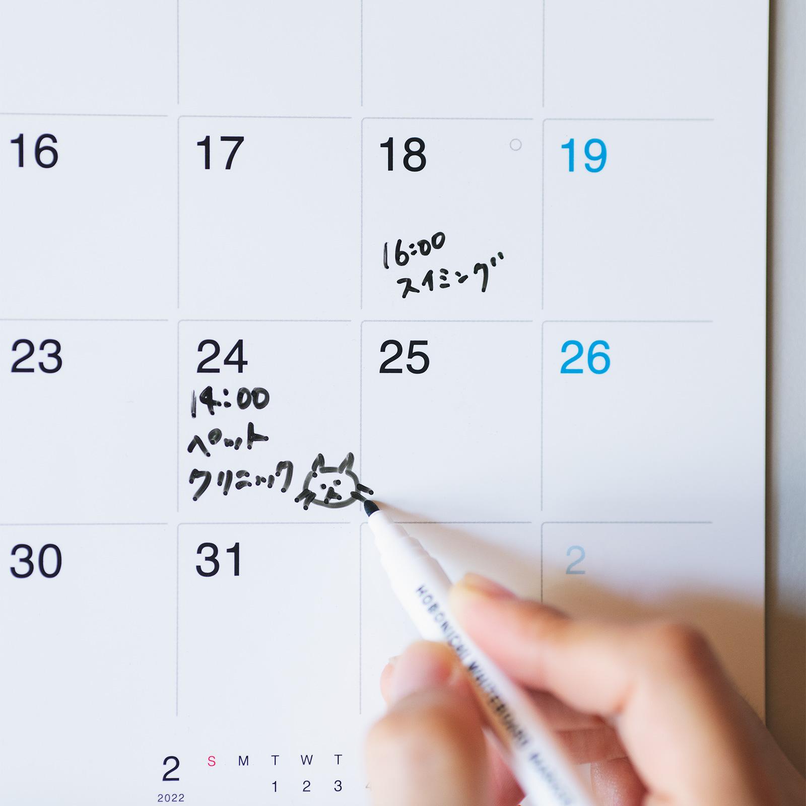 たっぷり書き込めて何度でも書き直せる、おしゃれな壁掛けカレンダー2022年版