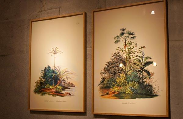 レトロな雰囲気が漂う、おしゃれなボタニカルアートのポスター