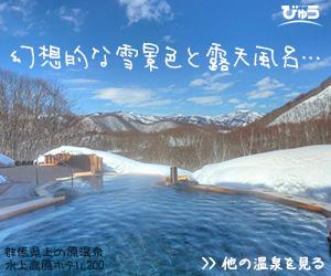 温泉旅行特集_雪見露天風呂 びゅう
