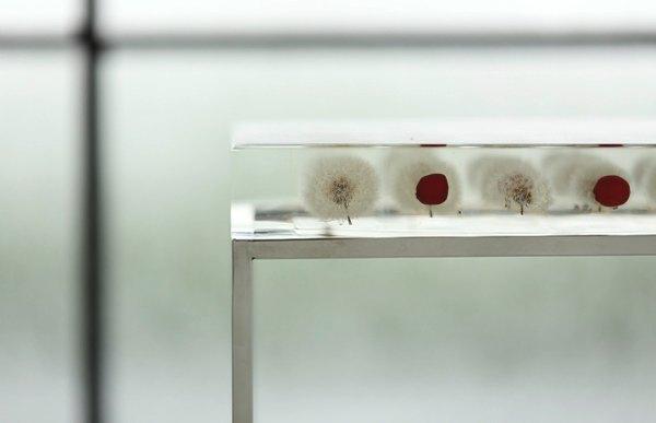 個性豊かな植物の造形美を堪能できる、おしゃれなサイドテーブル